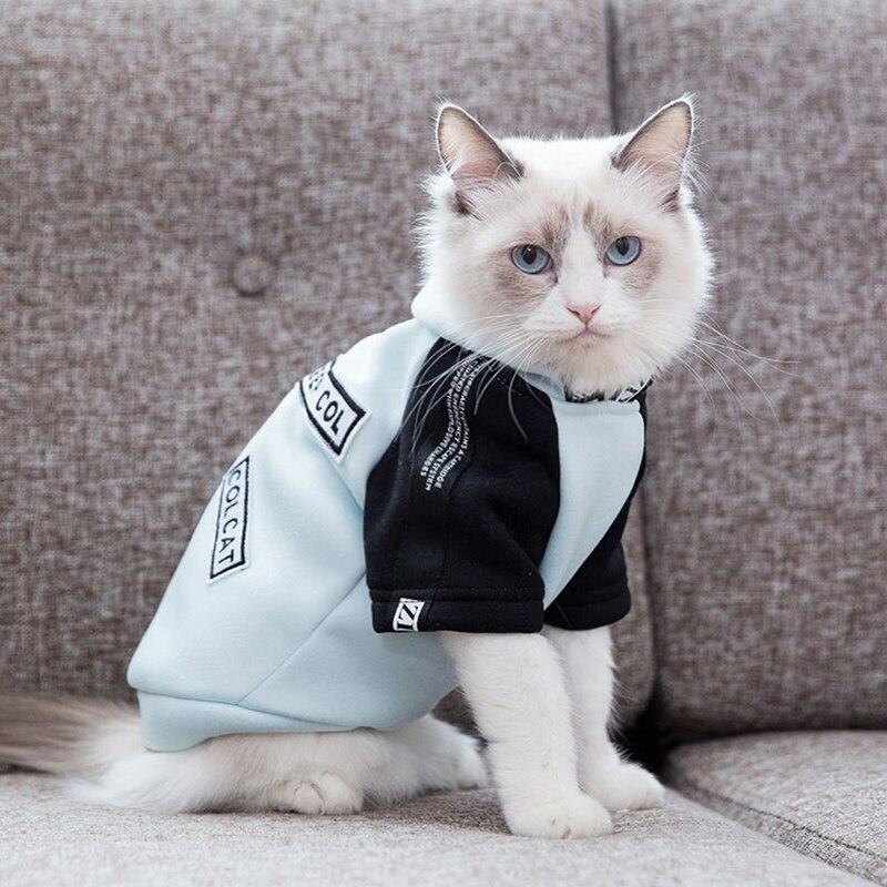 картинки кошек на одежде что этих могилах