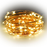 10M 100 DC12V Yellow Warm White Silver Copper Wire Micro String Lights Lighting Starry Decor Holiday
