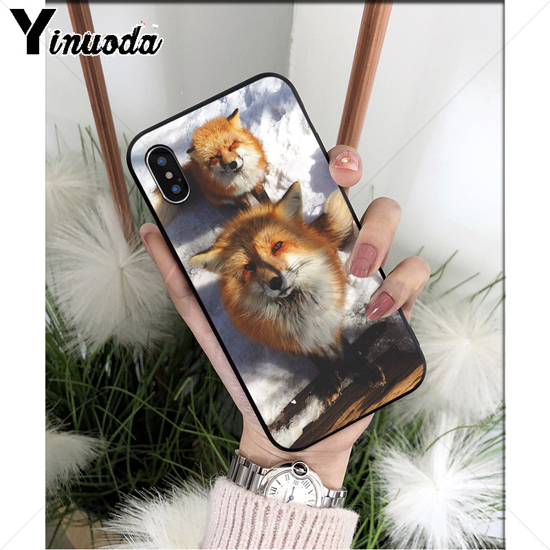 Yinuoda Animal Raccoon Fox Silicone Soft TPU black Phone Case for Apple iPhone 8 7 6 6S Plus X XS MAX 5 5S SE XR Mobile Cover in Half wrapped Cases from Cellphones Telecommunications