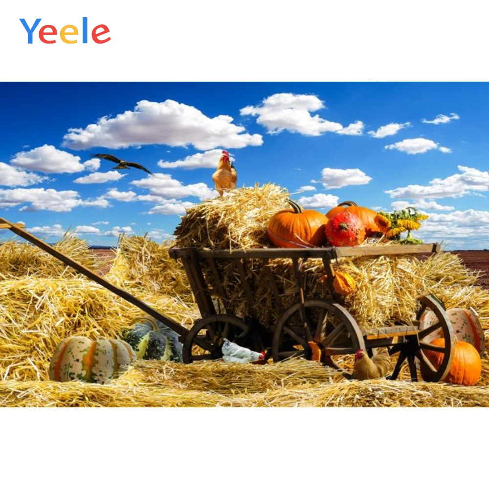 Yeele Photography Backdrops Haystack Pumpkin Chicken Autumn Harvest Season Blue Sky Cloud Background Photocall For Photo Shoot in Background from Consumer Electronics