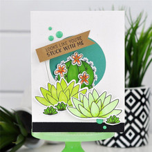 Naifumodo Cactus Clear Stamps and Die Plant Word Birthday Metal Cutting Craft New 2019 Scrapbooking Card Making DIY