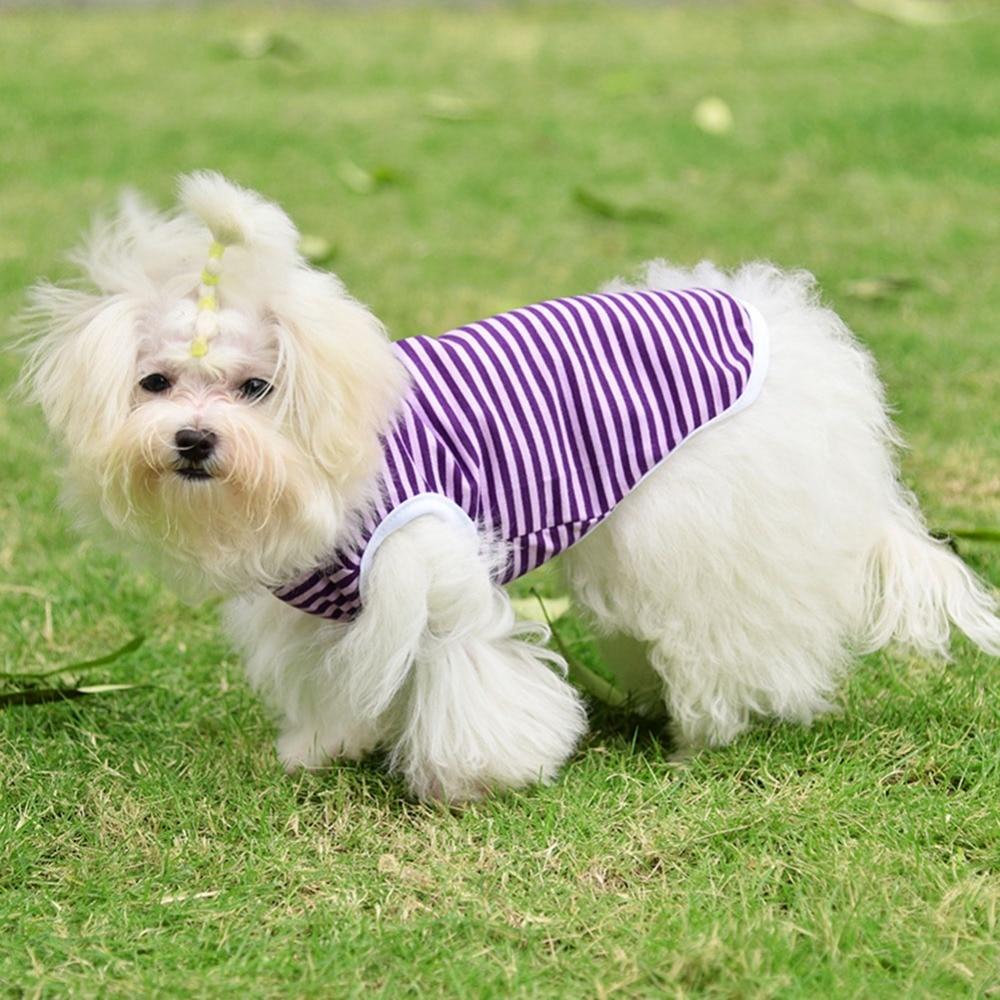 Комфортабельный жилет для собак, - Товары для домашних животных - Фотография 1