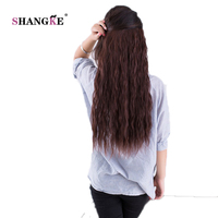 SHANGKE 24 Long Kinky Curly Hair Extensions 5 Clips In Hair Extensions Heat Resistant Synthetic Fake