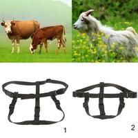 Strong Nylon Pet Collar Dog Sheep Horse Donkey Adjustable Walking Harness
