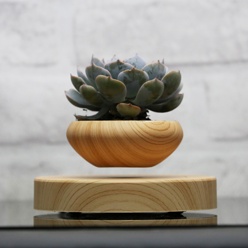 Levitating plant pot reviews online shopping levitating for Levitating plant
