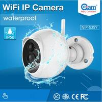 NIP 53SY Nice Design Outdoor Ip Camera Waterproof HD 1080P P2P Camera Built IN PIR Motion