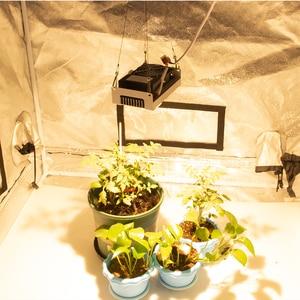 Image 5 - 크리 어 cxb3590 cob led 성장 빛 전체 스펙트럼 100 w 200 w 시민 led 실내 텐트 온실 수경 식물 꽃에 대 한 램프를 성장