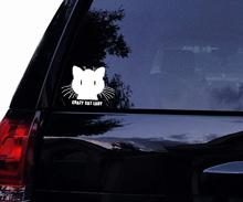 Crazy CAT Lady Fluffed Cat Vinyl Car Decal, Laptop Window Sticker (4in, White)