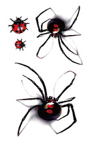 Red Spider & Ladybug  Body Art  Sexy  Waterproof Temp Tattoo Sticker  #r122
