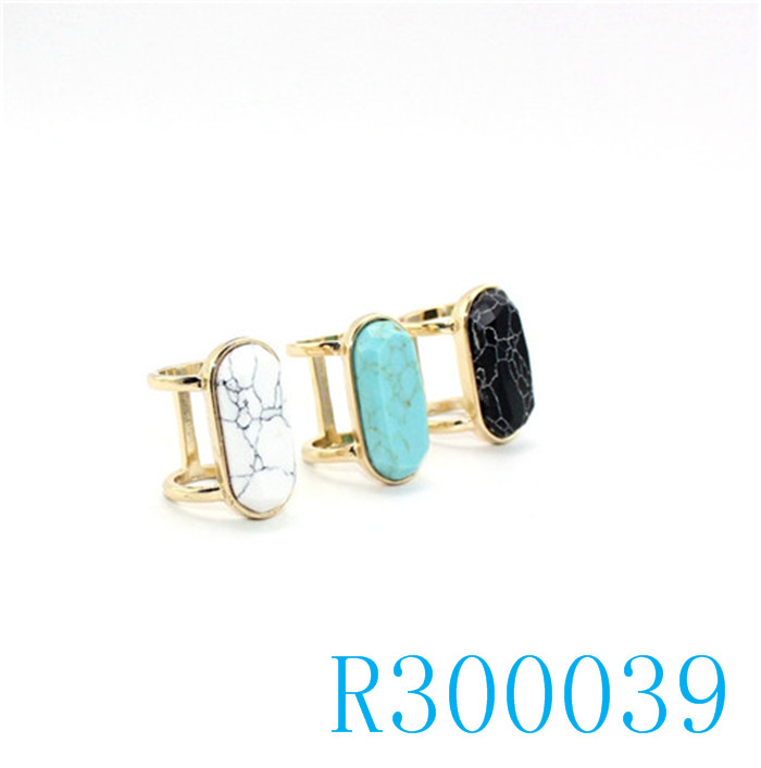 R300039