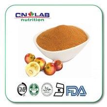 Organic camu camu powder/camu camu fruit extract Vitamin C 10:1 10kg/lot
