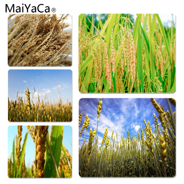 MaiYaCa Simple Design Golden ears of rice Customized laptop Gaming mouse pad...