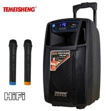 Temeisheng SL08 высокое Мощность Портативный громкоговоритель Bluetooth Динамик Поддержка Wirelss микрофон открытый аудио динамик MP3-плеер