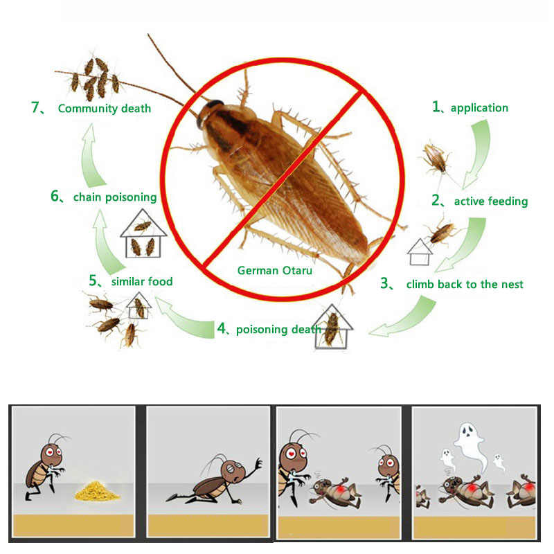 XUNZHE 10 حزم فعالة قتل صرصور الطعم مسحوق صرصور مبيد الحشرات الصرصور القاتل مكافحة الآفات رفض فخ مكافحة الآفات