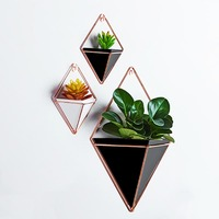 Nordic Modern Indoor Wall Vase Metal Iron Art Acrylic Hydroponic Hanging Flower Pot Succulent Plant Wall Planter Home Decoration