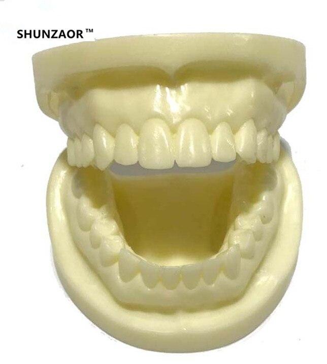 Tandmodell dentition Ny högkvalitativ vit korundtumandmodell - Skola och pedagogiska förnödenheter - Foto 2