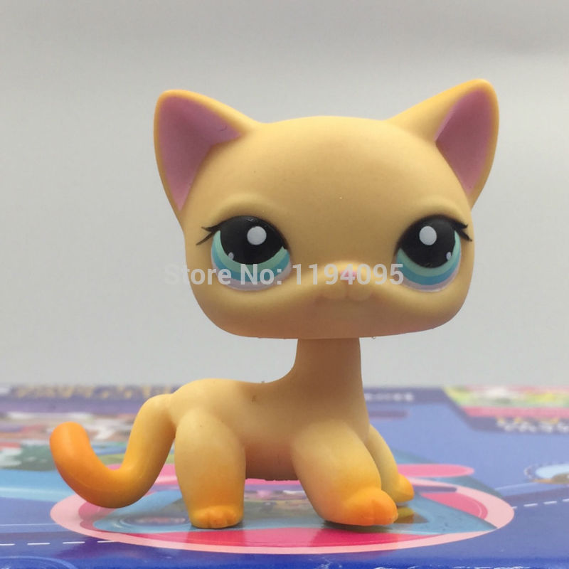 Pet toys Short Hair kitty #339 Yellow Kitten Blue Eyes Cat Rare Animal Toys Healthy Material lps pet shop short hair kitty and dog collection classic animal pet cat free shipping toys action figures kids toys gift