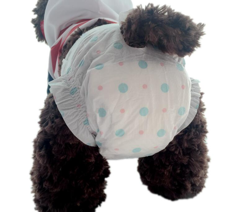 Pet Diapers Urine Shorts Pet Female Dog Water Absorbing Type Dry Health Pants Pet Dog Disposable Sanitary For Female Dog