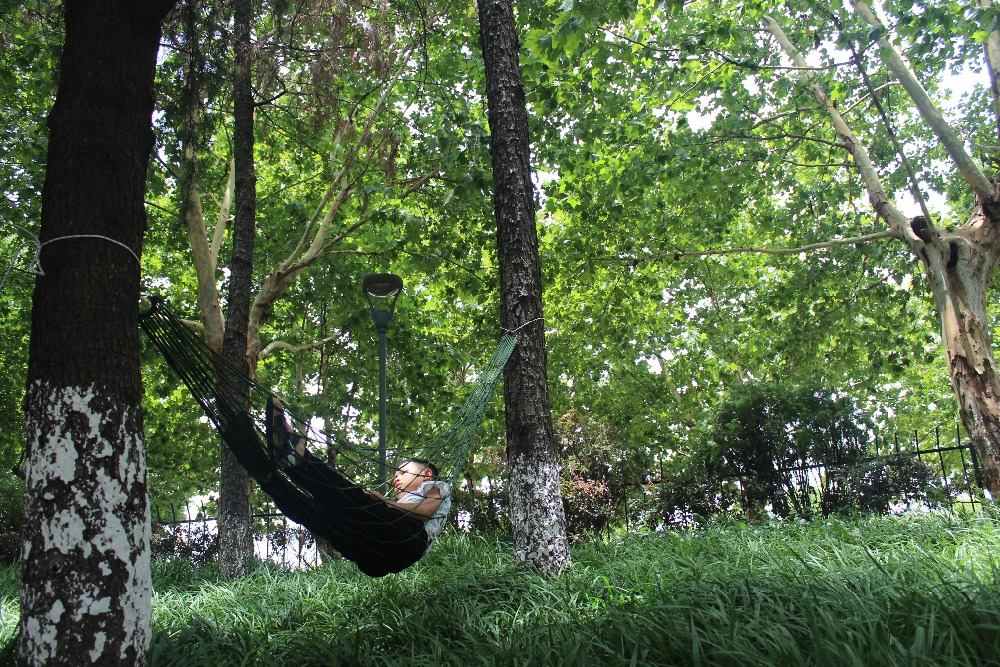 Portable Hammock (2)