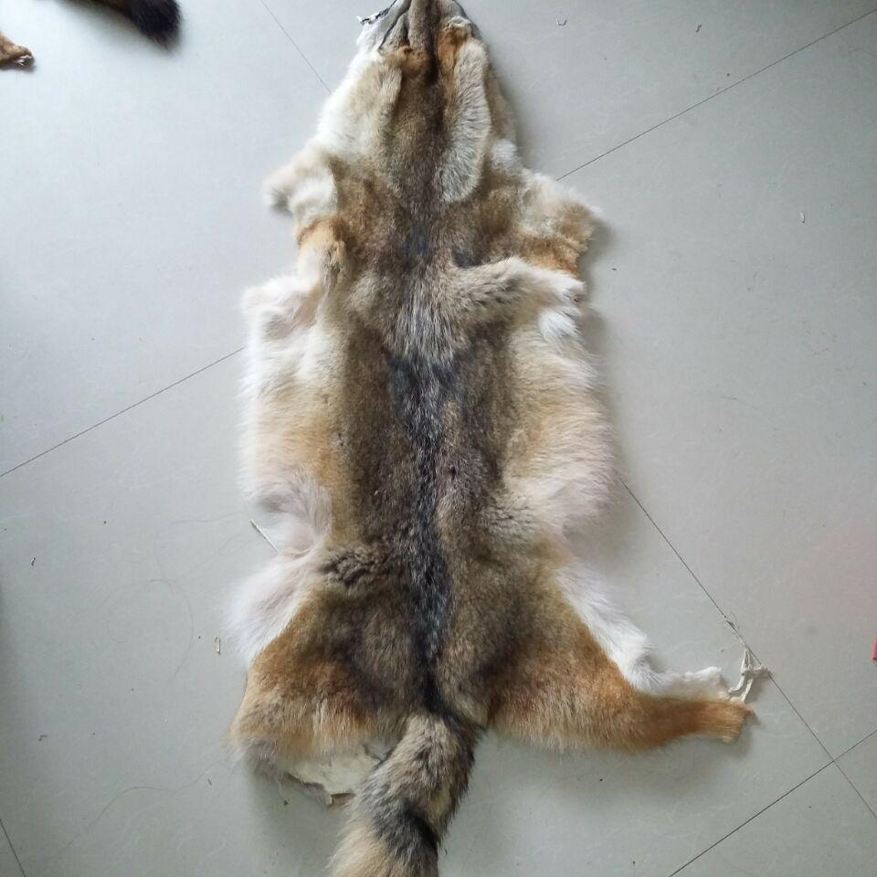 Wholesale price Coyote fur pelt real fur skin