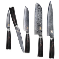 New Brand Damascus Knives 5 Piece Set 67 Layers VG10 Damascus Steel Beauty Pattern Blade Best