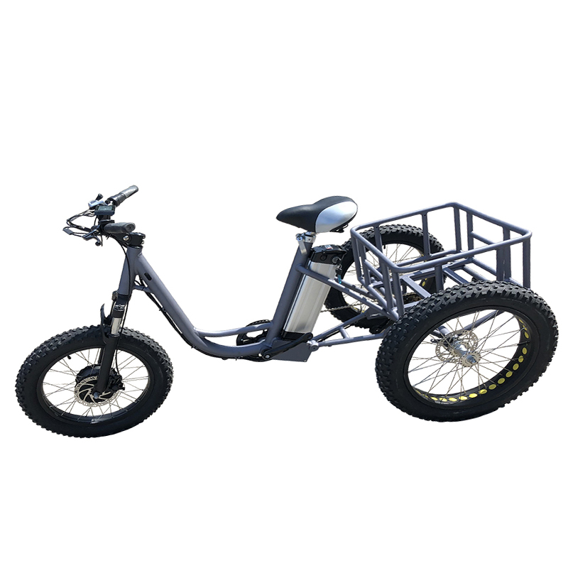 electric bicycle (6)