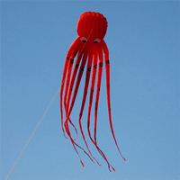Large Octopus Kite with Handle Line Children Eagle Kite Surfing Cute Animal Vlieger Octopus Kite Adults Fun Flying Kites