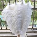 Atacado 50 pçs/lote 35-40 cm/14-16 polegada de plumas de Avestruz Branco plumas e penas de avestruz para decoração do casamento máscara