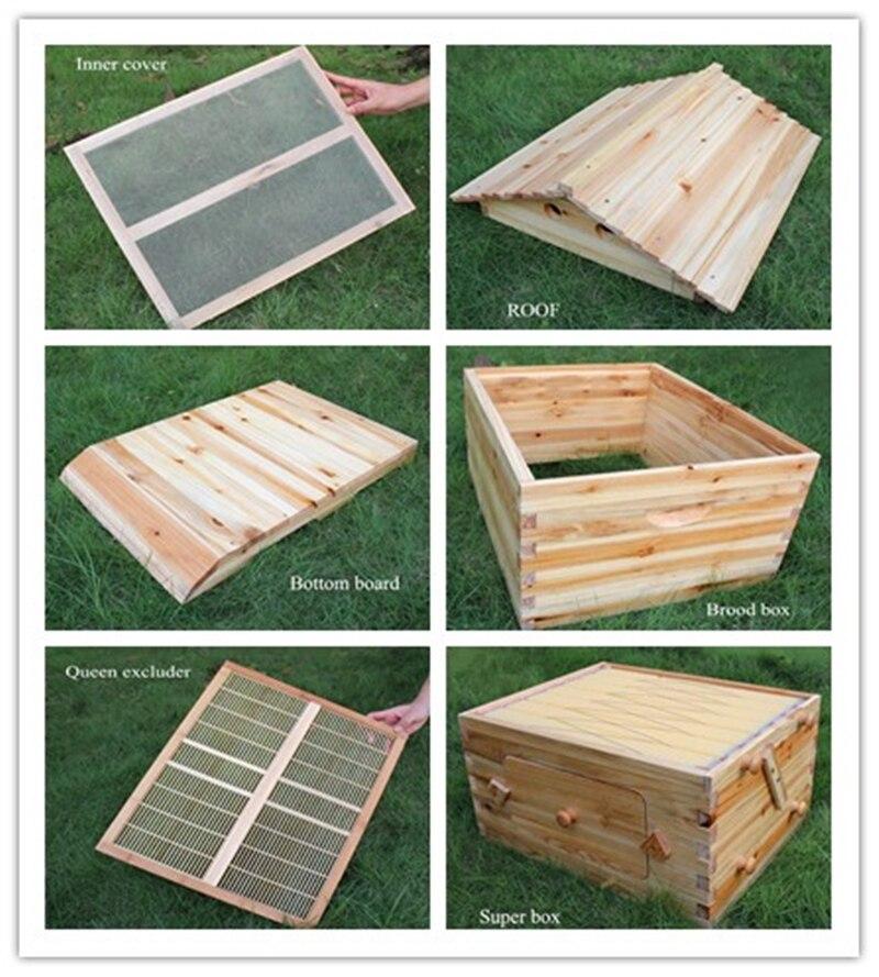Honig fluss hive kit mit 7 stücke kunststoff beehive rahmen holz ...