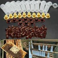 100pcs Plastic Queen Rearing System Cultivating Box Cell Cups Bee Catcher Cage Beekeeping Tool Equipment