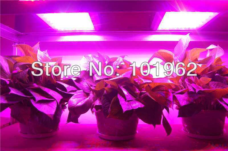 100PCS*3W professional grow light for plant