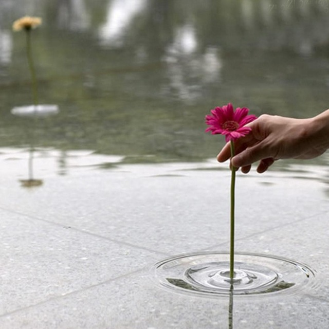 Aliexpress Buy New Magic Floating Crystal Glass Planter Flower