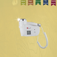 Hotel Hair Dryer Wall Mounted Hairdryer For Family Cheap Blow Dryer Holder Wall Mount Silent Hairdryer