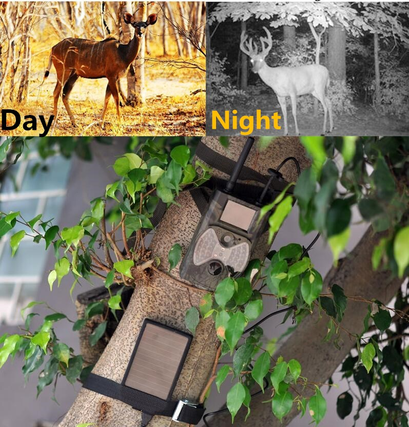 все цены на Solar Panel Hunting Trail Camera MMS Photo Traps GPRS GSM Outdoor Hunting Trail Cameras MMS Hunting Cameras Solar Panel Included