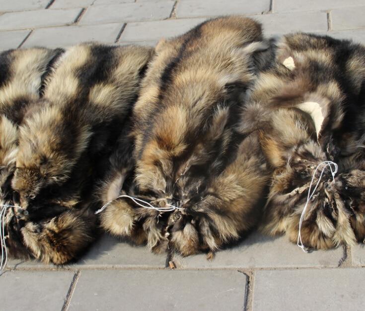 Peau de fourrure de raton laveur couleur naturelle pas cher - 5