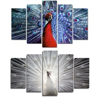 Modern 5 pieces canvas painting colorful peacock series wall mural picture decor printing artwork for living room ready to hang