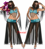 2015 New Arabian Belly Dancer Costume Free Size Sexy Halloween Costume Silver Black Silk Belly Dance