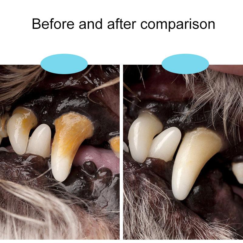 Aparato removedor de manchas Periodontal de una sola cabeza 4