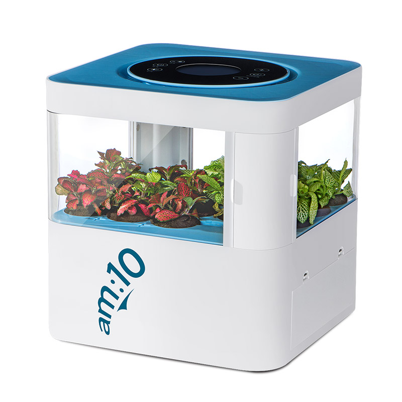 FIMEI Tech-Forest Air Purifier 8600 with HEPA Filter Carbon Filter and Plant-Extracted Aroma Crystal 12v hepa filter multifunctional air purifier aroma with air freshener