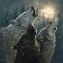 HIGH QUALITY HAND PAINTED ANIMAL OIL PAINTING HOWLING WOLVES CANVAS ART 24X36 HOME DECORATION