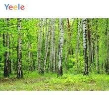 Yeele Primavera Verde Foresta Alberi Scenico Della Ragazza di Nozze Personalizzati Fotografiche Fondali Fotografia Sfondi Per Foto In Studio