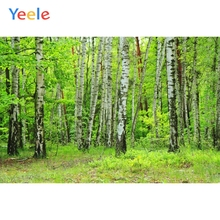 Yeele Spring Green Forest Trees Scenic Girl Wedding Personalized Photographic Backdrops Photography Backgrounds For Photo Studio