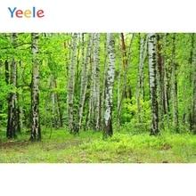 Yeele الربيع الأخضر أشجار الغابات الخلابة فتاة الزفاف شخصية التصوير الخلفيات التصوير الخلفيات ل استوديو الصور