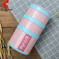 Food Container Bento Lunch Box Kids Tableware Microwave Warm Home Japan Style Kitchen Supplies Dinnerware Set