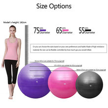 Exercise Ball (55/65/75cm) Extra Thick Yoga Ball Chair Anti-Burst Heavy Duty Stability Ball Birthing Ball with Quick Pump(China)