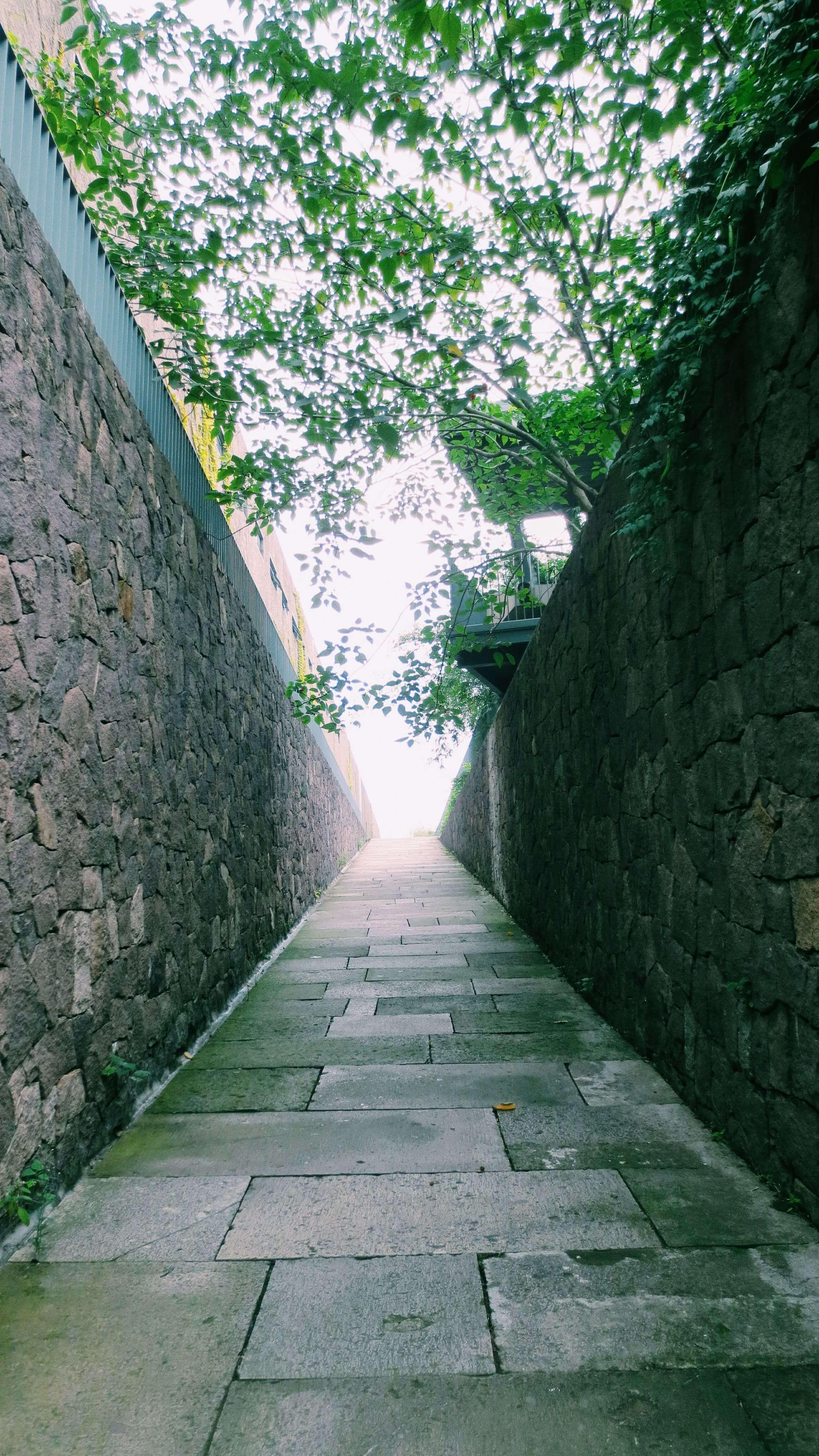 通向「幸福」的阶梯