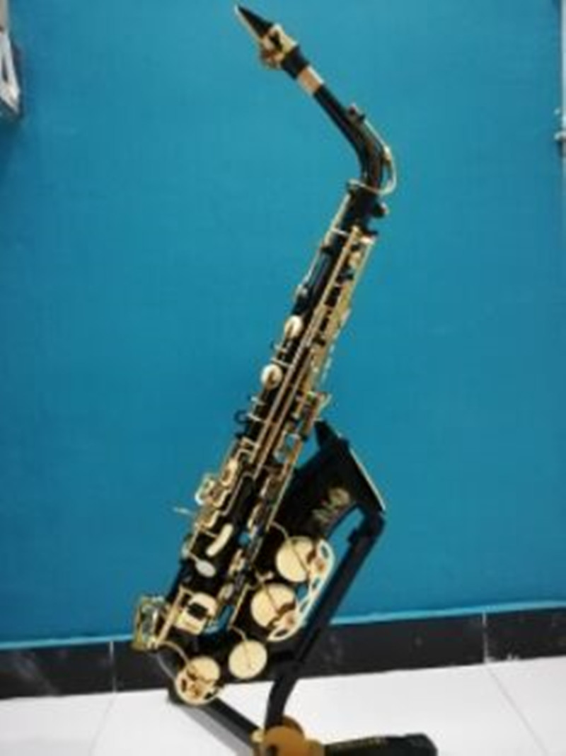Hot sale saxophone black Alto brass Selm engraving SAS R54 mode black gold Sax musical instruments
