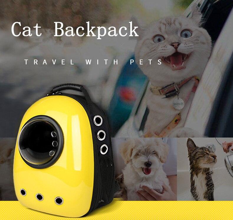 HTB1kSuin7omBKNjSZFqq6xtqVXaM - Capsule Cat Carrier - MillennialShoppe.com | for Millennials