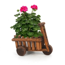 Caioffer Wooden Flowers Pot Garden Weeding Decoration Plastic Flowerpots Gift Plant Sementes Saksi Bonsai Macetas Decor CXB08