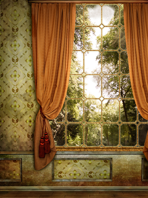 5X7ft Window Indoor ArtFabric Photography Backdrop Thin fabric cloth Printed background Newborns Portrait Background D-6360
